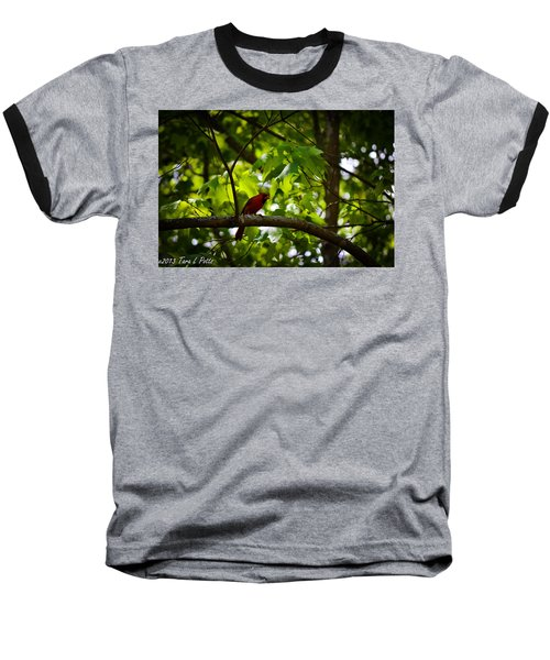 Cardinal In The Trees Baseball T-Shirt