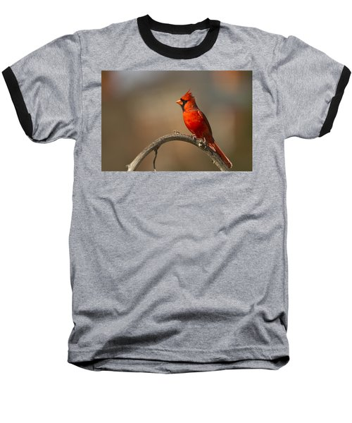 Baseball T-Shirt featuring the photograph Cardinal by Jerry Gammon