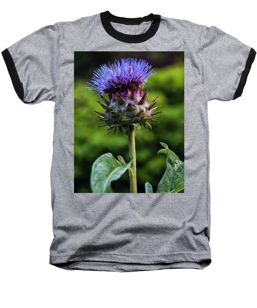 Cardoon Baseball T-Shirt by Chris Flees
