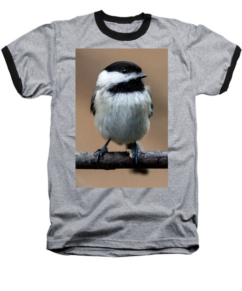 Carolina Chickadee Baseball T-Shirt by John Haldane