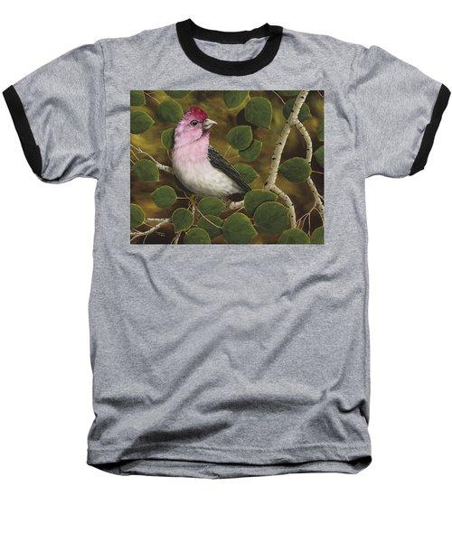 Cassins Finch Baseball T-Shirt