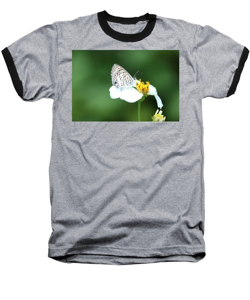 Baseball T-Shirt featuring the photograph Cassius Blue On Wildflower by Greg Allore