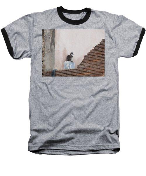 Baseball T-Shirt featuring the photograph Cat Above The Roman Ruins by Tiffany Erdman