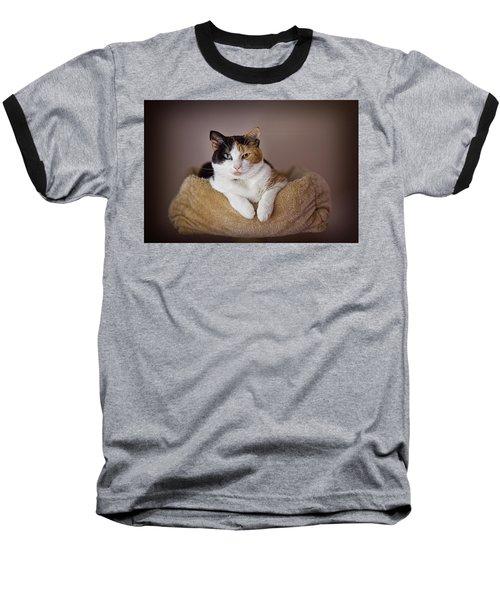 Cat Portrait Baseball T-Shirt