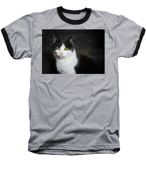 Cat Portrait With Texture Baseball T-Shirt by Matthias Hauser