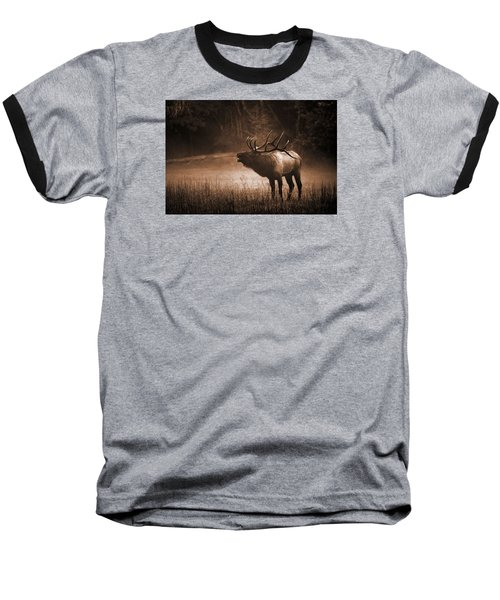 Cataloochee Bull Elk In Sepia Baseball T-Shirt