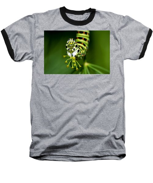 Caterpillar Of The Old World Swallowtail Baseball T-Shirt by Torbjorn Swenelius