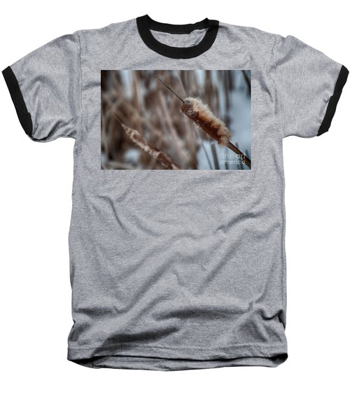 Baseball T-Shirt featuring the photograph Cattails by Bianca Nadeau