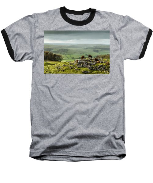 Cattle In The Yorkshire Dales Baseball T-Shirt