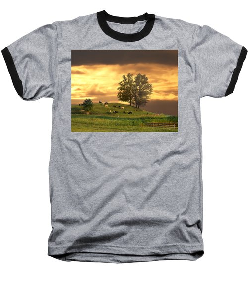 Cattle On A Hill Baseball T-Shirt