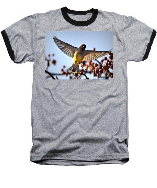 Cedar Waxwing Flight Baseball T-Shirt