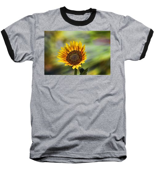 Celebrating The Sunlight Baseball T-Shirt by Gary Holmes