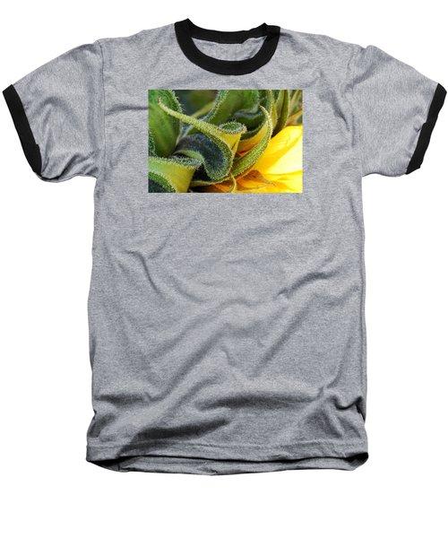 Celebration Sunflower Baseball T-Shirt by Wendy Wilton