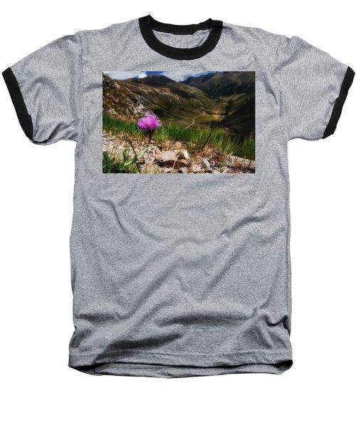 Centaurea Baseball T-Shirt