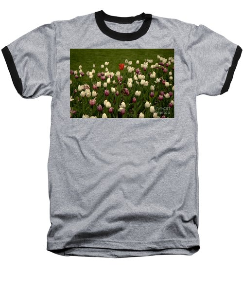 Center Of Attention Baseball T-Shirt