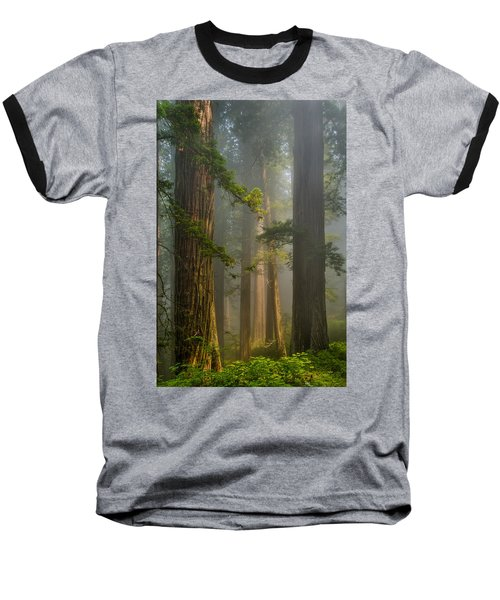 Center Of Forest Baseball T-Shirt