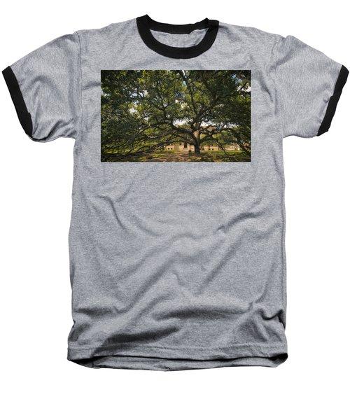 Century Tree Baseball T-Shirt