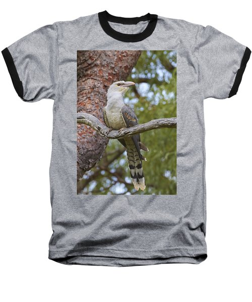 Channel-billed Cuckoo Fledgling Baseball T-Shirt