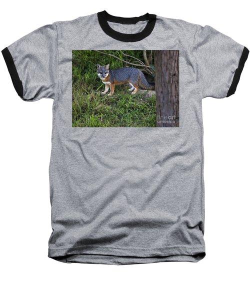 Channel Island Fox Baseball T-Shirt