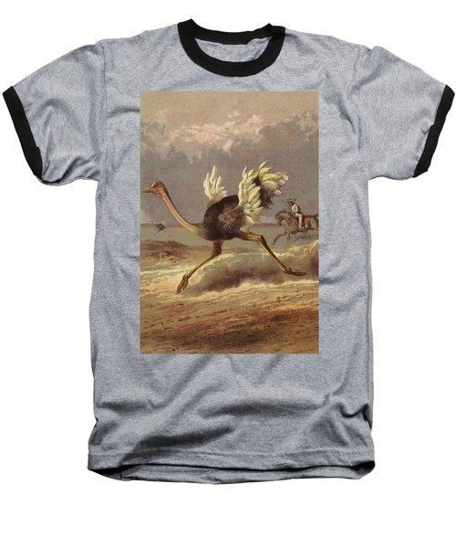 Chasing The Ostrich Baseball T-Shirt by English School
