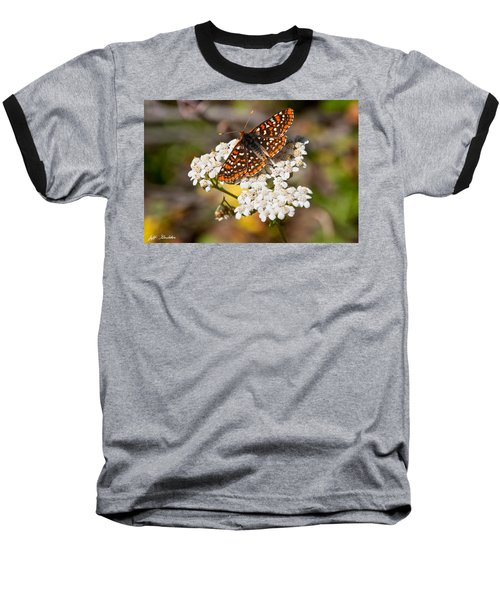 Baseball T-Shirt featuring the photograph Checkerspot Butterfly On A Yarrow Blossom by Jeff Goulden