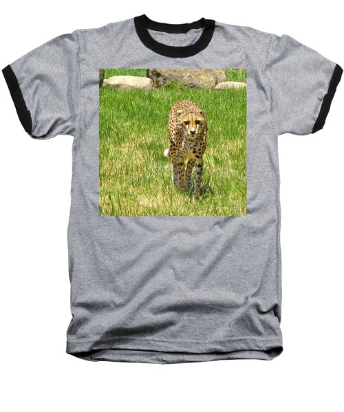 Baseball T-Shirt featuring the photograph Cheetah Approaching by CML Brown