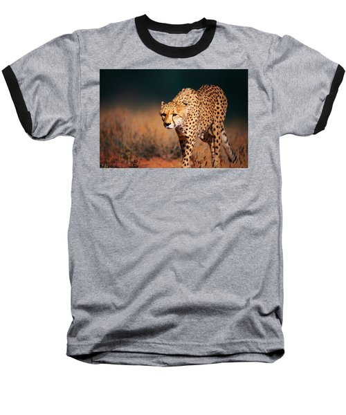 Cheetah Approaching From The Front Baseball T-Shirt