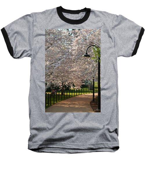Cherry Blossoms 2013 - 060 Baseball T-Shirt