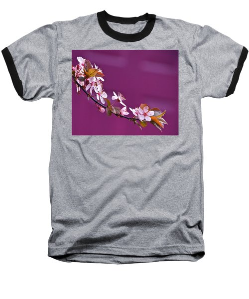 Cherry Blossoms And Plum Door Baseball T-Shirt