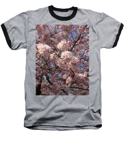 Cherry Blossoms For Lana Baseball T-Shirt by Emmy Marie Vickers