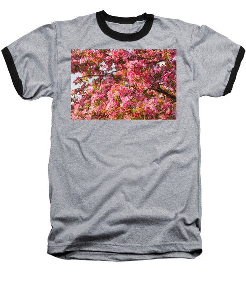 Cherry Blossoms In Washington D.c. Baseball T-Shirt
