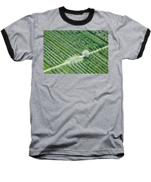 Baseball T-Shirt featuring the photograph Cherry Tree by Davorin Mance