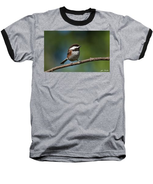 Chestnut Backed Chickadee Perched On A Branch Baseball T-Shirt