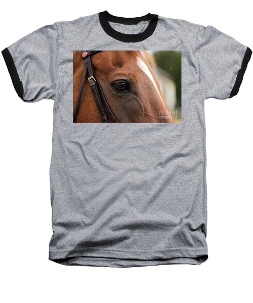 Chestnut Horse Eye Baseball T-Shirt