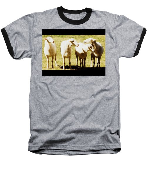 Baseball T-Shirt featuring the photograph Cheviot Sheep by Kathy Barney
