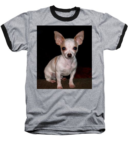 Baseball T-Shirt featuring the photograph Chihuahua Puppy by Maria Urso