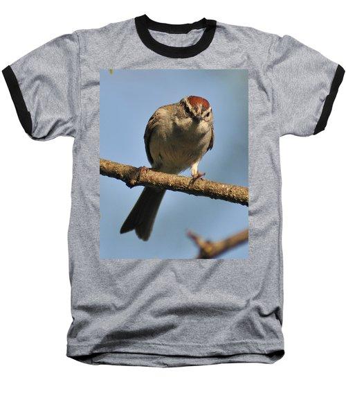 Chipping Sparrow 265 Baseball T-Shirt