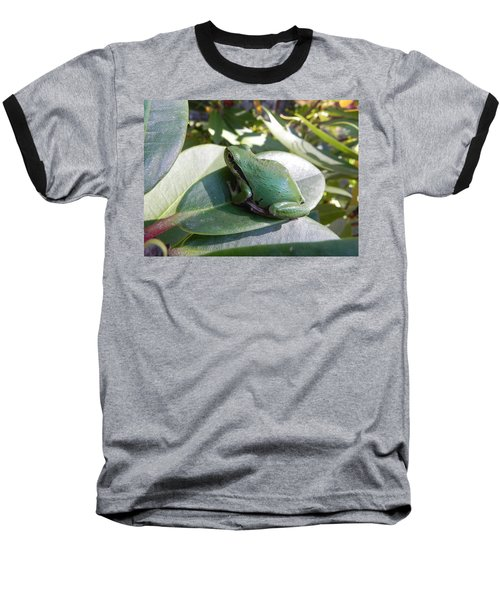 Chorus Frog On A Rhodo Baseball T-Shirt