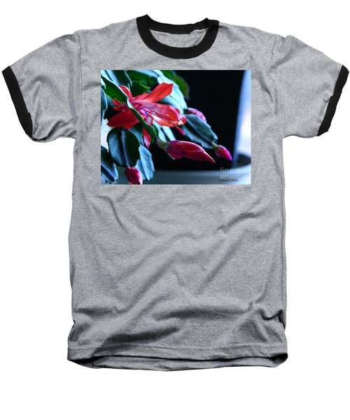 Christmas Cactus In Bloom Baseball T-Shirt