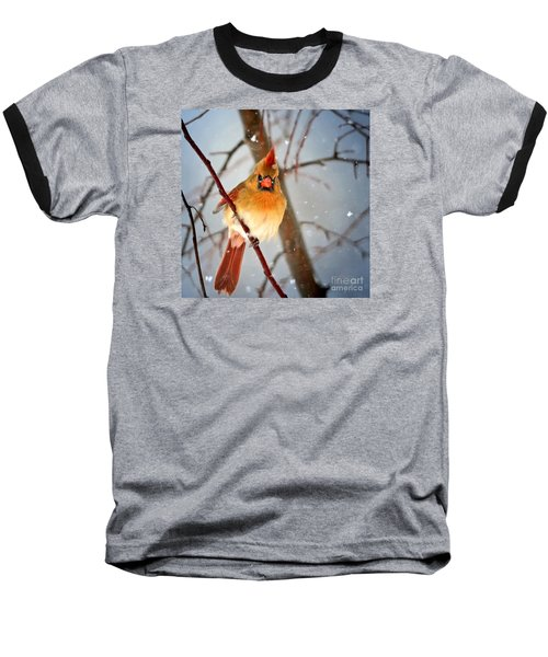 Northern Cardinal Snow Scene Baseball T-Shirt