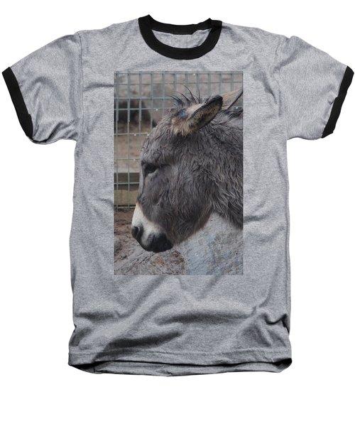 Christmas Donkey Baseball T-Shirt