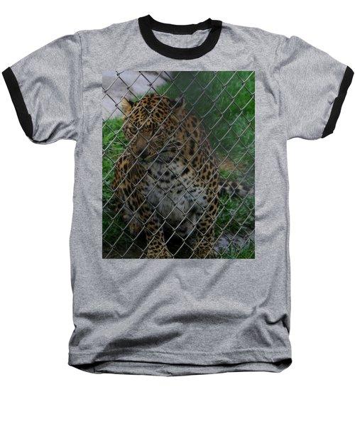 Christmas Leopard II Baseball T-Shirt