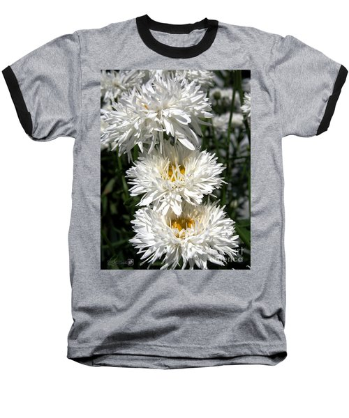 Baseball T-Shirt featuring the photograph Chrysanthemum Named Crazy Daisy by J McCombie