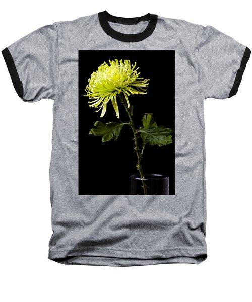 Baseball T-Shirt featuring the photograph Chrysanthemum by Sennie Pierson