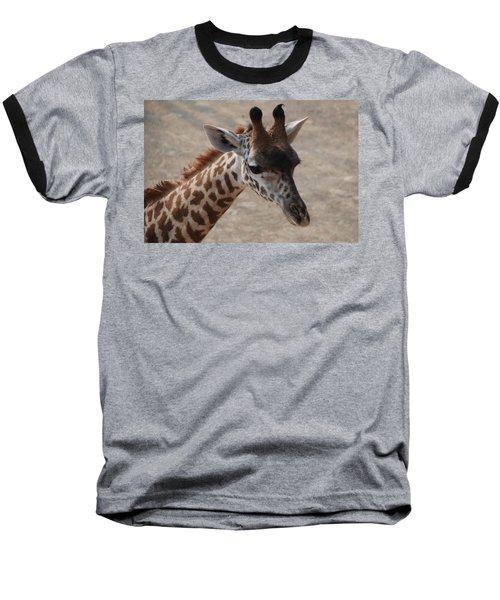 Cincinnati Sue Baseball T-Shirt
