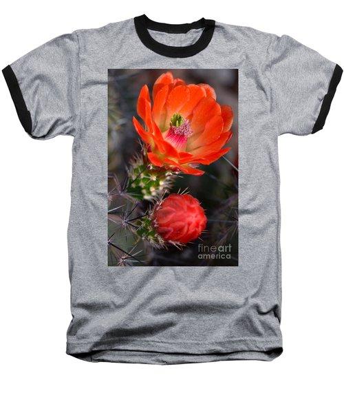 Claret Cup Cactus Baseball T-Shirt