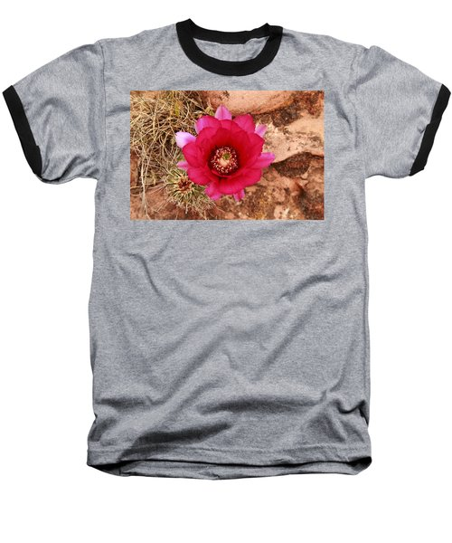 Baseball T-Shirt featuring the photograph Claret Cup Cactus On Red Rock In Sedona by Alan Vance Ley