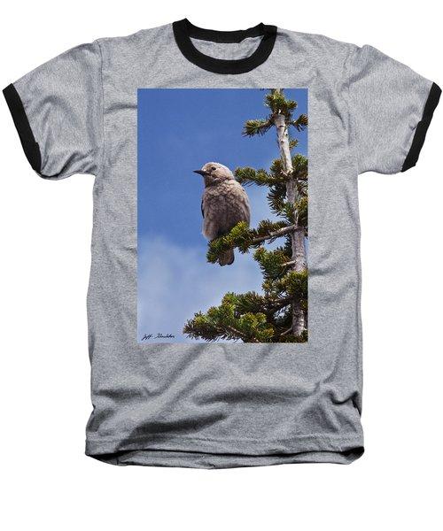 Clark's Nutcracker In A Fir Tree Baseball T-Shirt by Jeff Goulden
