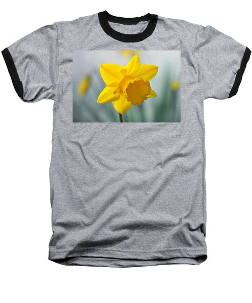 Classic Spring Daffodil Baseball T-Shirt by Terence Davis
