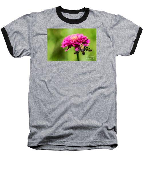 Clearwing Moth Baseball T-Shirt